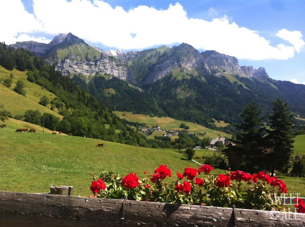 Diversión en las montañas –  Mont Blanc (France)
