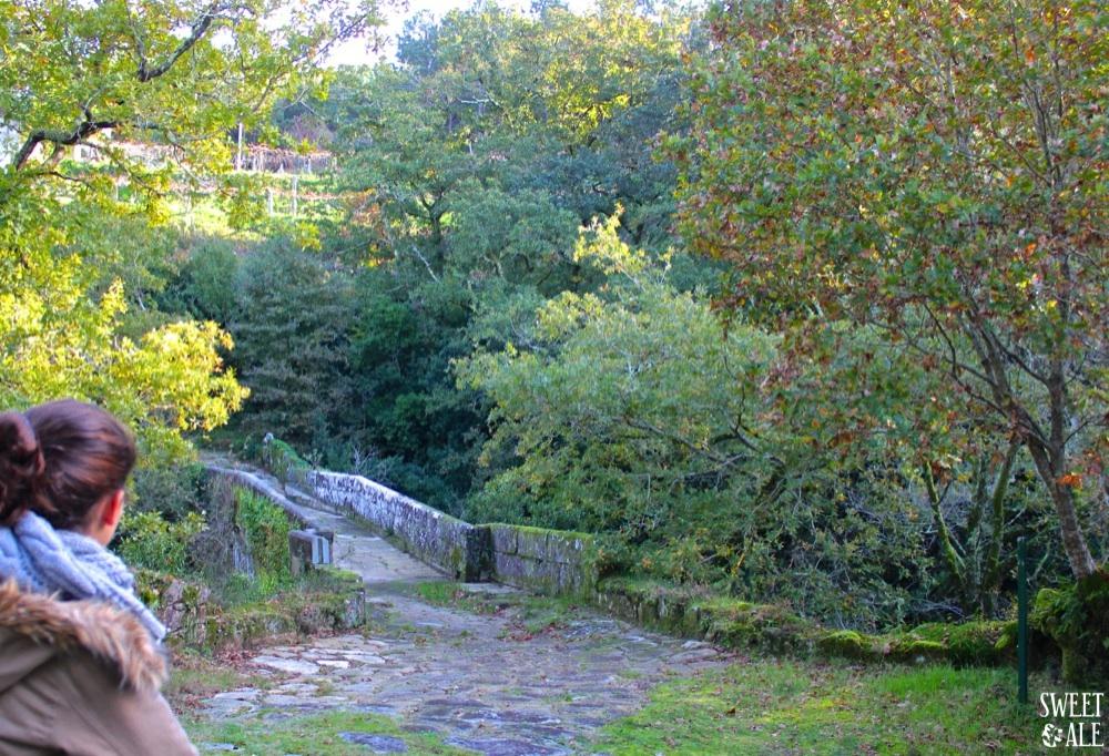Ale & Puente romano