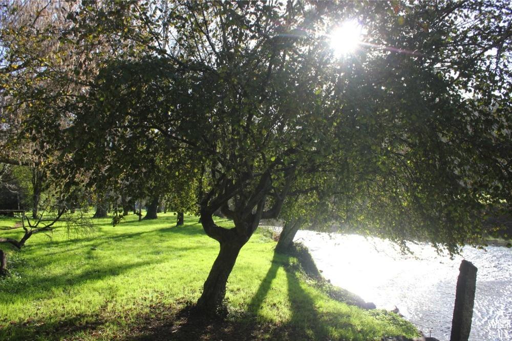 jardín rio umia
