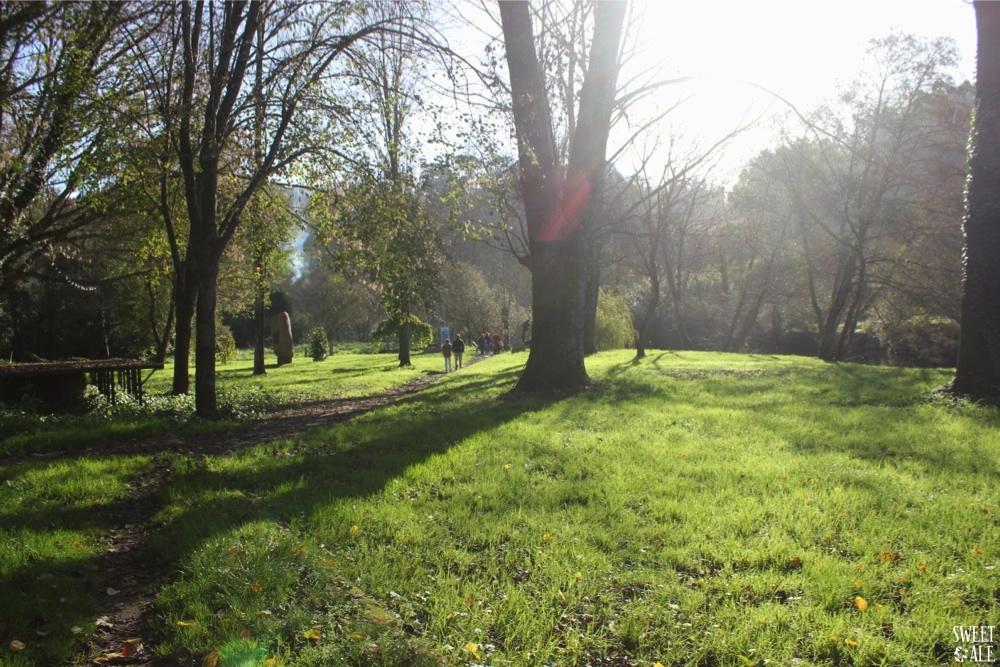 paseando jardin caldas