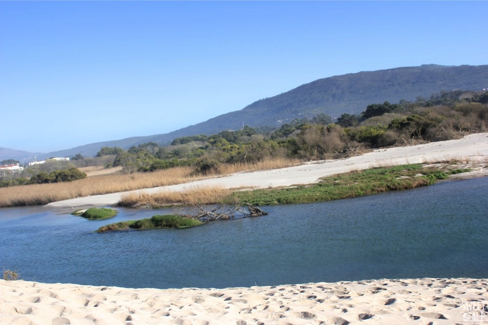 Dunas & río