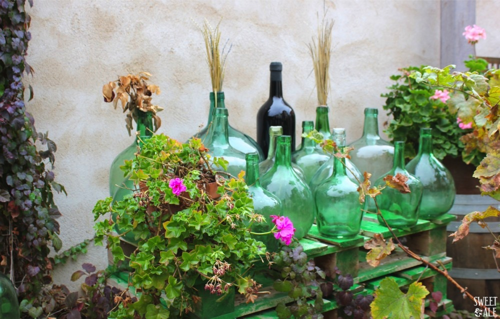 botellas & geranios