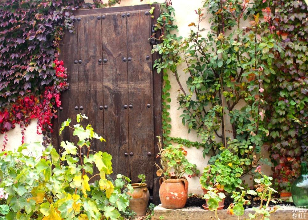 puerta antigua terraza
