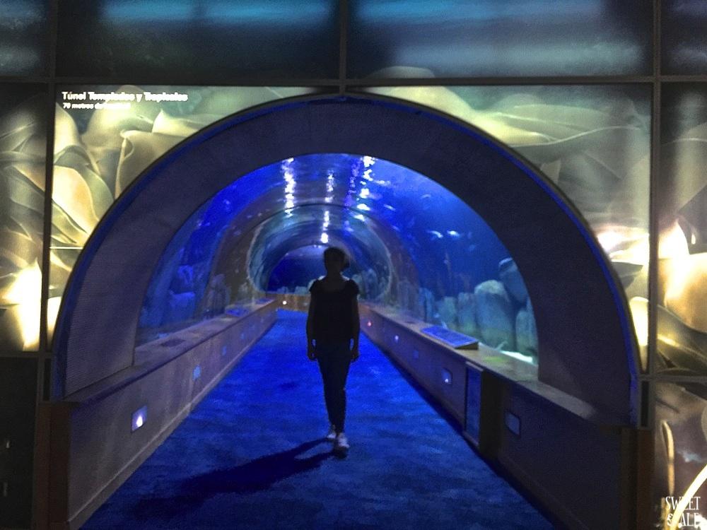 tunel submarino