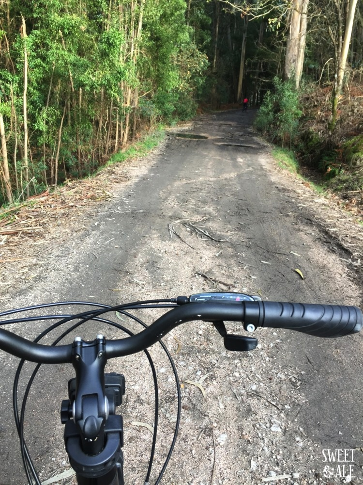 bici camino