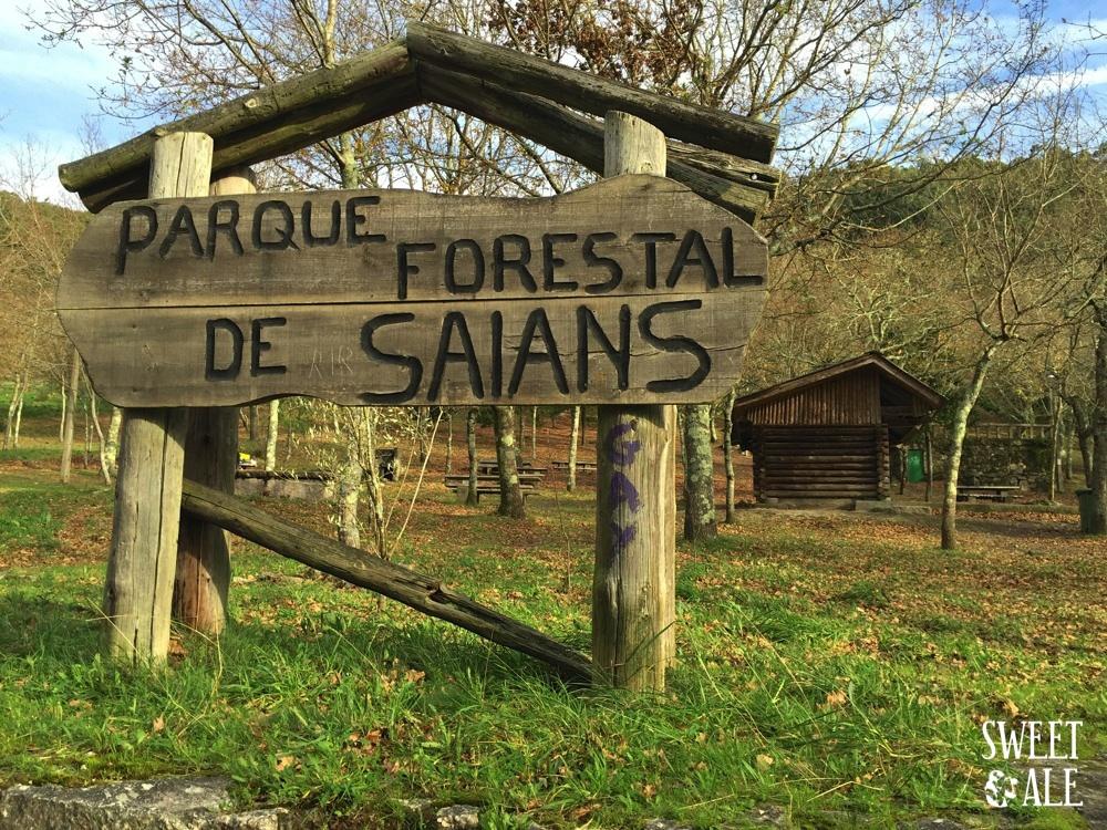 parque forestal saians