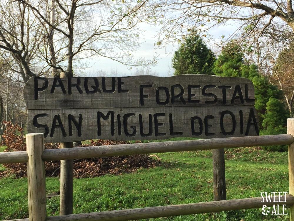 parque forestal san miguel de oia