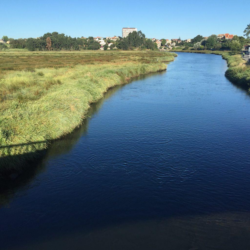 desembocadura rio