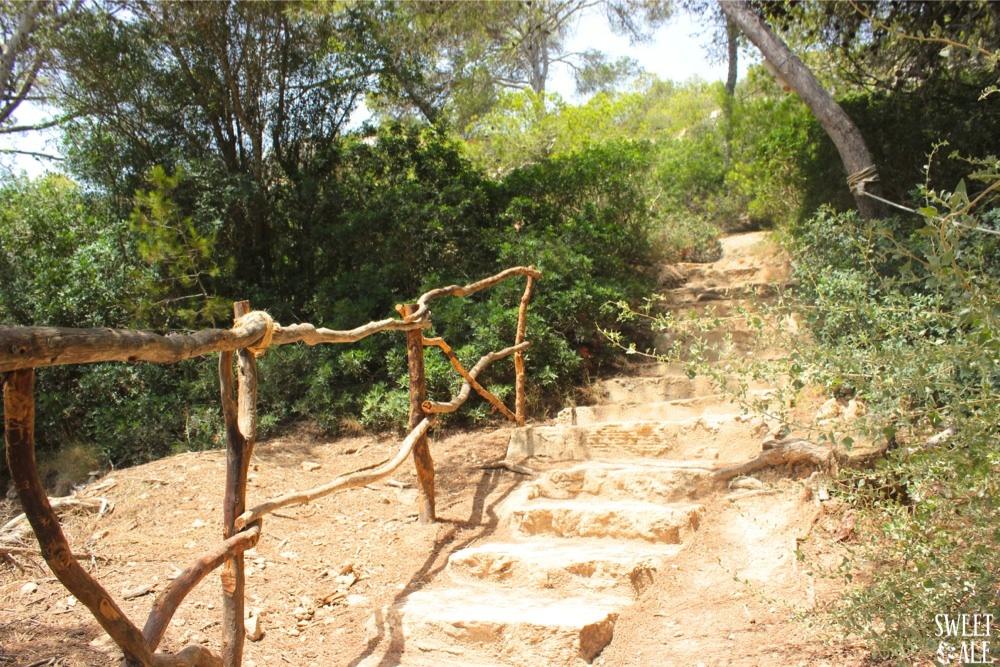 escaleras camino