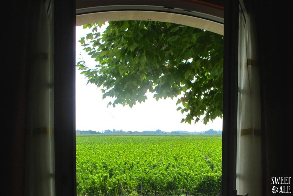 ventana-vinedos