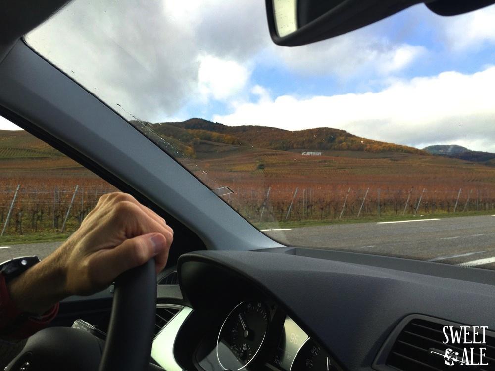 ruta coche alsacia