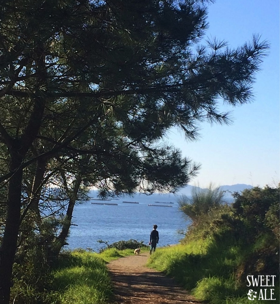 Barco Vigo a Cangas – Paseo hasta Liméns – Pontevedra (Galicia)