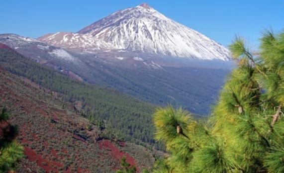 7 Planes Para Disfrutar En Tenerife Con Niños