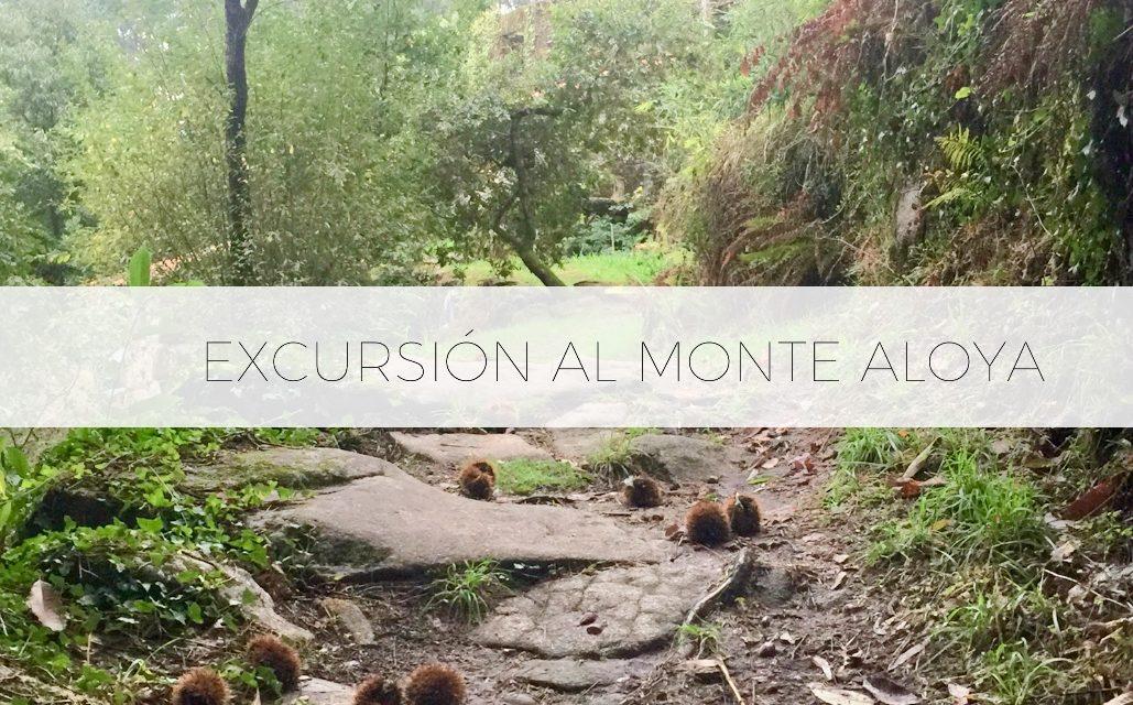 Excursión al Monte Aloya – Vigo