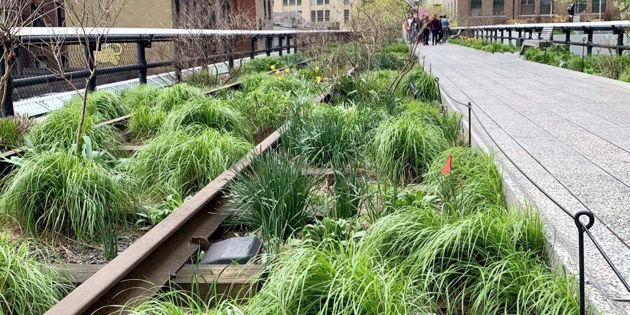 High Line, un parque elevado en Nueva York