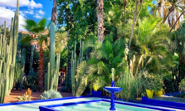 5 Jardines en Marrakech que no puedes perderte